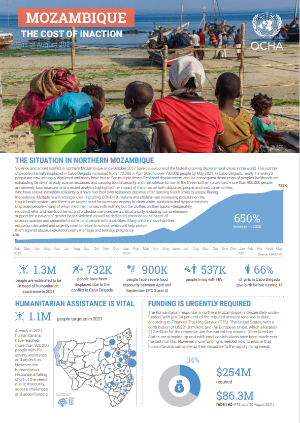 Mozambique - the cost of inaction (as of August 2021)